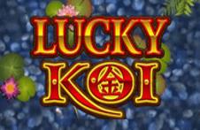 Lucky Koi